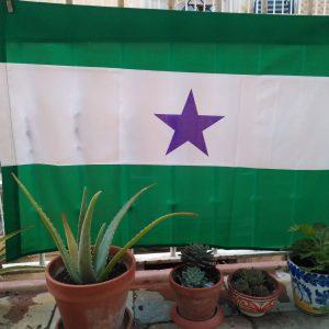 Bandera arbonaida estrella morada